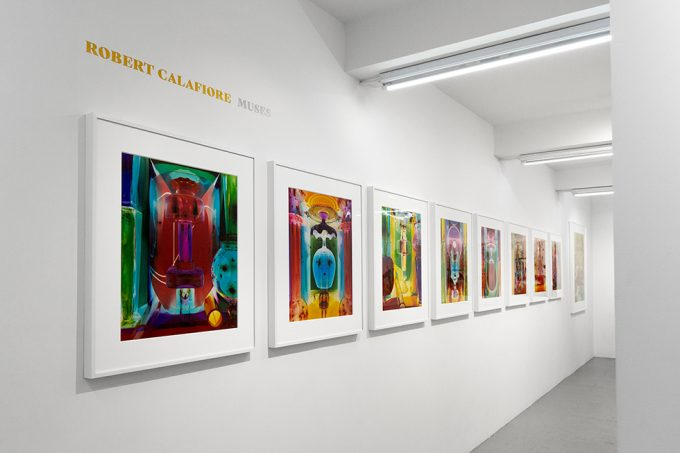 Robert Calafiore, Installation Image I
