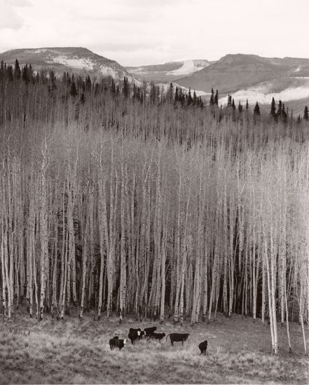 Michael Crouser, Burns, Colorado 4
