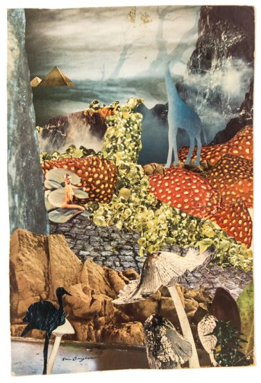 Kenny Burgess, Garden of Alice, Collage