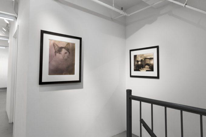 Mark Morrisroe, Installation Image V