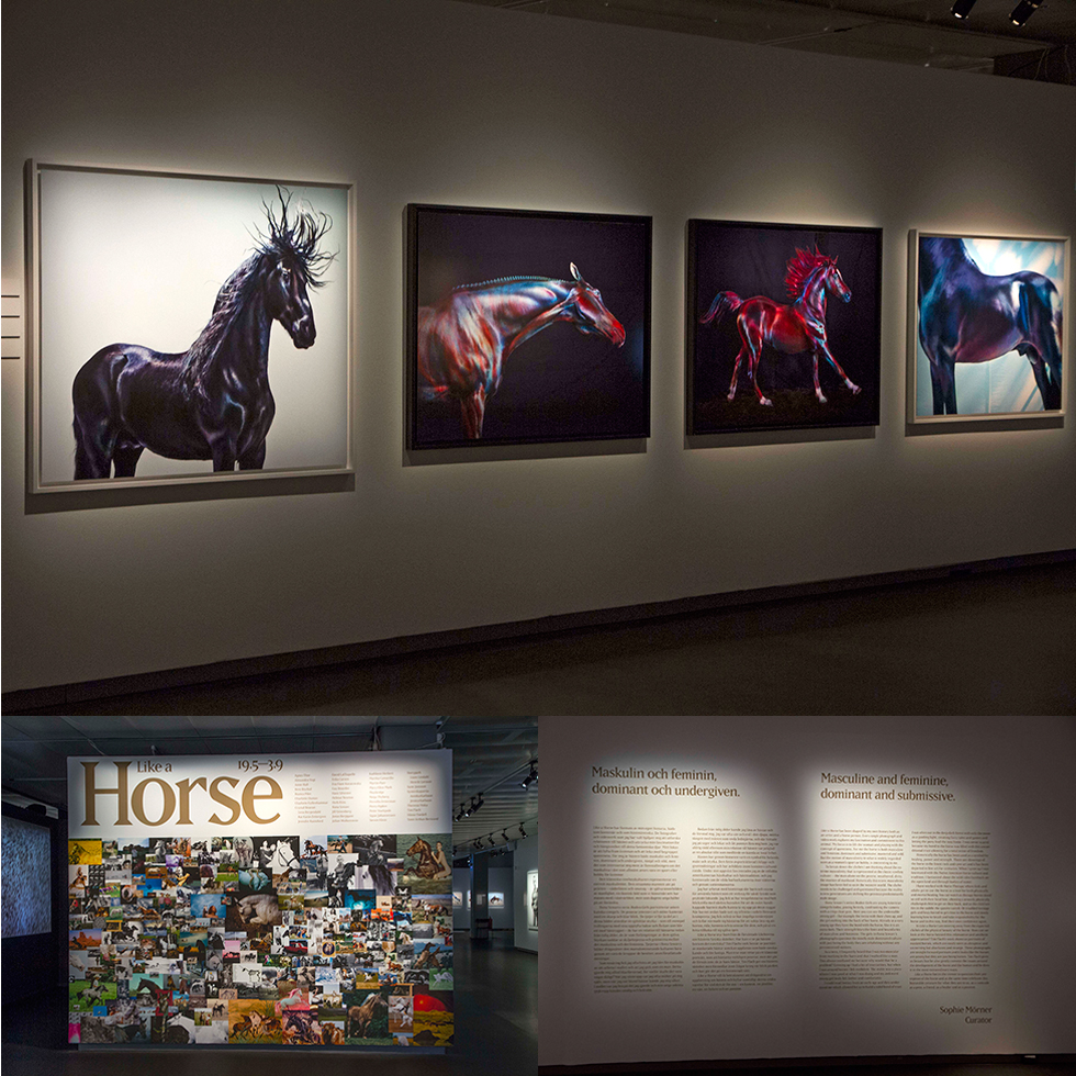 "Jill Greenberg artworks in ""Like A Horse"" at Fotografiska"