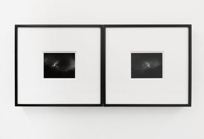 Rafael Soldi, Life Stand Still Here, Installation Image VIII