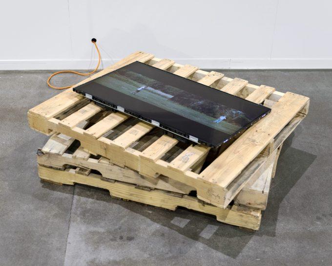 Shawn Bush, F2D [Installation View]