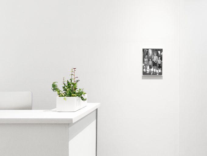 Joshua Lutz, Mind the Gap, Installation Image V