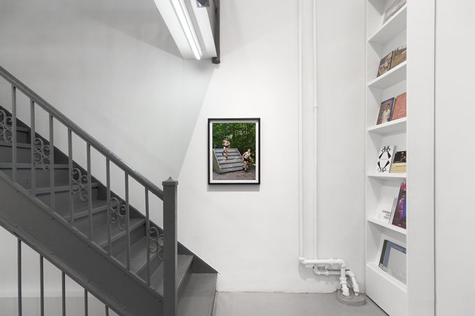 Luke Smalley, Exercise at Home, Installation Image VIII