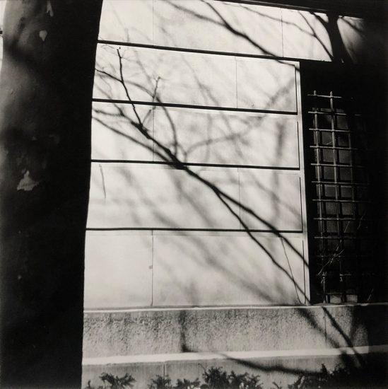 Bruce Cratsley, Metropolitan Museum Wall