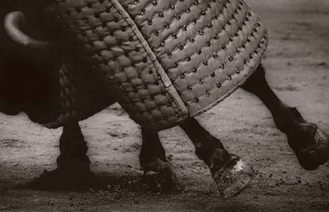 Michael Crouser, Picador Horse Feet
