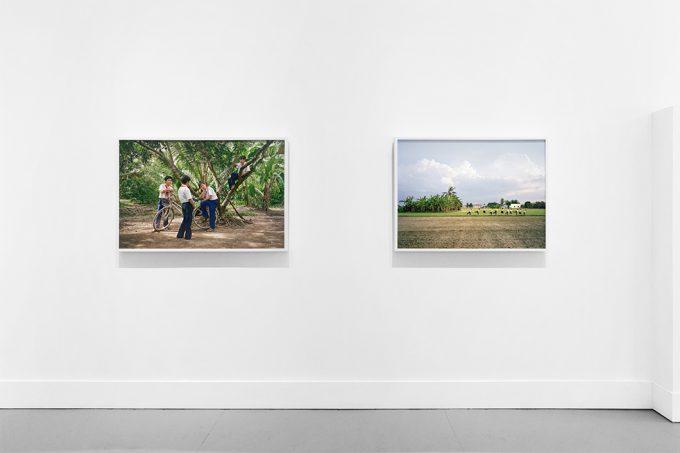 Pipo Nguyen-duy, (My) East of Eden, Installation Image II